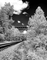 Cuyahoga Valley Rail Tracks (3)
