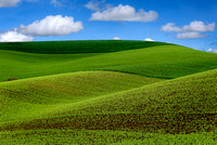 Palouse Scenic Byway Rolling Hills Cuntryside (1)