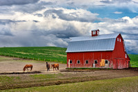 Palouse Scenic Byway Red barn (2)