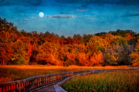 Moon Rising in Fall at Sunset - Textured