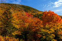 Fall Foliage - New Hampshire