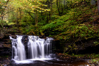 Wyandot Falls - 15 ft